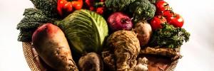 Slow food serendipity