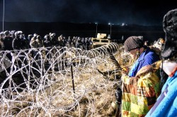 The front line separated with coils of razor wire - photo provided by rob wilson photography