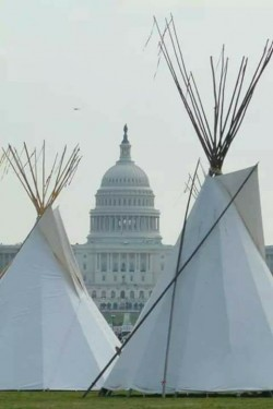Tipis on White House lawn - photo provided by Native Nations Rise