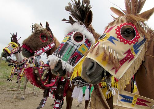 Native horse regalia at Rosebud Fair