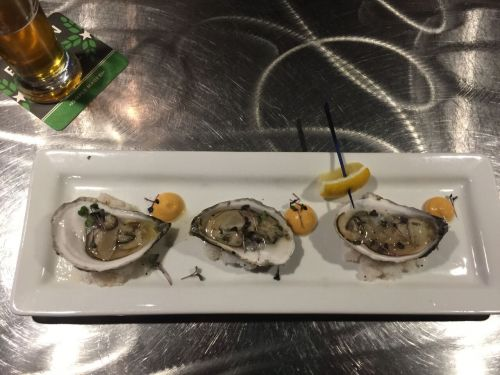 Oysters at Toasted Frog - photograph by Ben Myhre