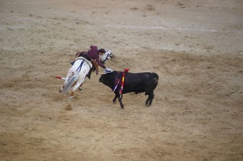 Madrid's Plaza del Toro bullfight - photograph by Sabrina Hornung