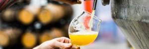 Brewery Tours at Junkyard Brewing Co.