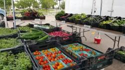 Northern Plains Farmers Markets