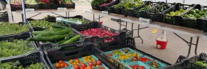 Top 5 reasons to shop at local farmers markets